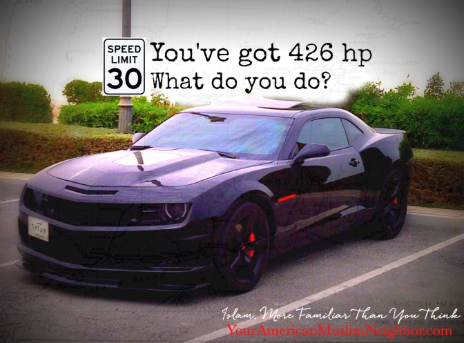 The Speed Limit is 30mph, You've Got 426 hp. What Do You Do?